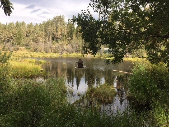 """Photo 13: Photos: 4371 BLACKWATER Road in Quesnel: Bouchie Lake House for sale in """"BLACKWATER - NAZKO"""" (Quesnel (Zone 28))  : MLS®# R2402787"""