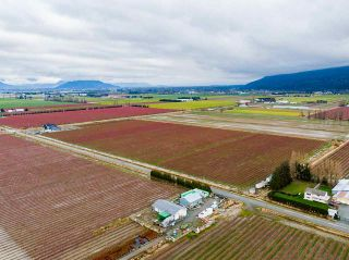 Photo 37: 40320 NO. 5 Road in Abbotsford: Sumas Prairie House for sale : MLS®# R2536110