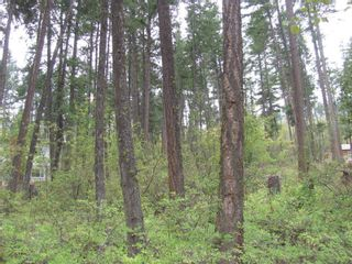 Photo 11: 7908 Alpine Road, in Vernon: Vacant Land for sale : MLS®# 10240275