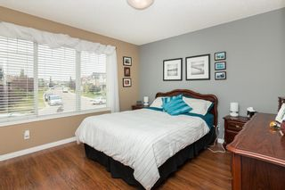 Photo 17: 172 COPPERFIELD Rise SE in Calgary: Copperfield Detached for sale : MLS®# C4201134