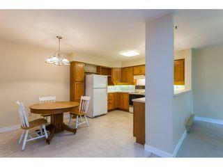 Photo 4: 204 9295 122 STREET in Surrey: Queen Mary Park Surrey Condo for sale : MLS®# R2369570