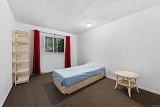 Photo 35: 169 Michael Pl in Fanny Bay: CV Union Bay/Fanny Bay House for sale (Comox Valley)  : MLS®# 873789