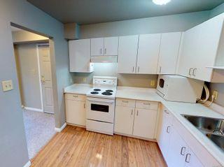 Photo 4: 103 3225 Alder St in : SE Quadra Condo for sale (Saanich East)  : MLS®# 877393