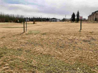 Photo 3: 30 Village Creek Estates: Rural Wetaskiwin County Rural Land/Vacant Lot for sale : MLS®# E4241750