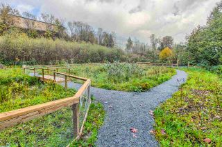 """Photo 15: 101 2238 WHATCOM Road in Abbotsford: Abbotsford East Condo for sale in """"WATERLEAF"""" : MLS®# R2008640"""