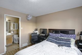Photo 23: 813 Applewood Drive SE in Calgary: Applewood Park Detached for sale : MLS®# A1076322