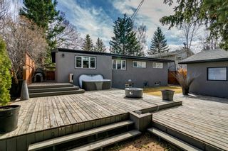 Photo 43: 16 Harley Road SW in Calgary: Haysboro Detached for sale : MLS®# A1092944