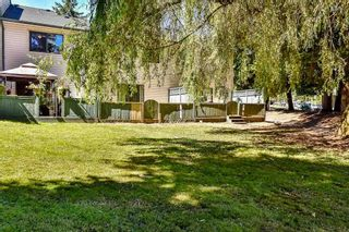 Photo 16: 3 6601 138 STREET in Surrey: East Newton Townhouse for sale : MLS®# R2211379