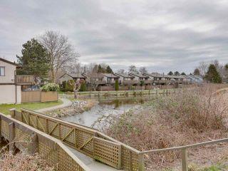 "Photo 25: 31 11391 7TH Avenue in Richmond: Steveston Village Townhouse for sale in ""Mariners Village"" : MLS®# R2538591"
