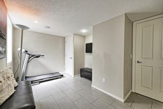 Photo 6: 140 COPPERPOND Villa SE in Calgary: Copperfield Row/Townhouse for sale : MLS®# C4303555