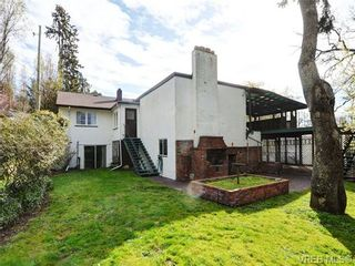 Photo 19: 3510 Richmond Rd in VICTORIA: SE Mt Tolmie House for sale (Saanich East)  : MLS®# 703026