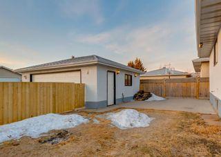 Photo 45: 11039 166 Avenue: Edmonton Detached for sale : MLS®# A1083224