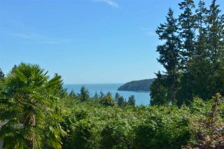 Photo 14: 5473 WAKEFIELD Road in Sechelt: Sechelt District House for sale (Sunshine Coast)  : MLS®# R2103493