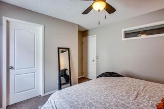 Photo 11: 216 Copperpond Road SE in Calgary: Copperfield Detached for sale : MLS®# A1034323