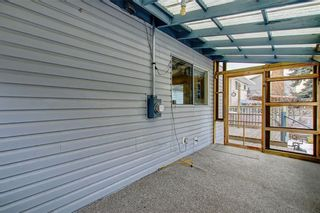 Photo 34: 283 QUEENSLAND Circle SE in Calgary: Queensland Detached for sale : MLS®# C4290754