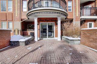 Photo 44: 218 838 19 Avenue SW in Calgary: Lower Mount Royal Apartment for sale : MLS®# A1070596