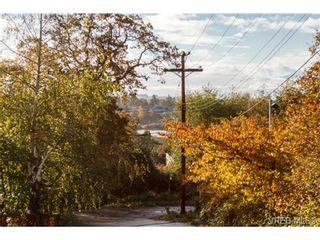 Photo 8: 4041 Nelthorpe St in VICTORIA: SE High Quadra Land for sale (Saanich East)  : MLS®# 685817