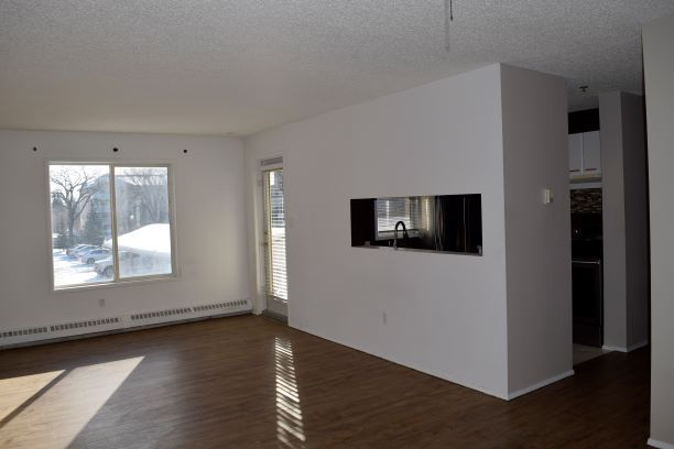 Photo 2: Photos: 215 11218 80 Street in Edmonton: Zone 09 Condo for sale : MLS®# E4223856