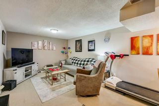 Photo 10: 168 Dover Meadow Close SE in Calgary: Dover Detached for sale : MLS®# A1082428