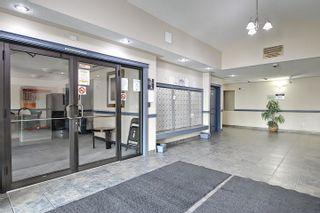 Photo 31: 137 16221 95 Street in Edmonton: Zone 28 Condo for sale : MLS®# E4259149