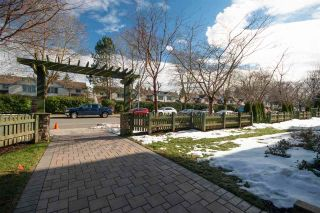 Photo 19: 303 8183 121A STREET in Surrey: Queen Mary Park Surrey Condo for sale : MLS®# R2383438