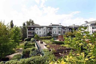 """Photo 21: 335 19528 FRASER Highway in Surrey: Cloverdale BC Condo for sale in """"THE FAIRMONT"""" (Cloverdale)  : MLS®# R2469719"""