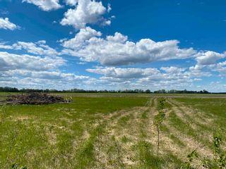 Photo 2: NE 34-49-27-W4 none: Rural Leduc County Rural Land/Vacant Lot for sale : MLS®# E4246771