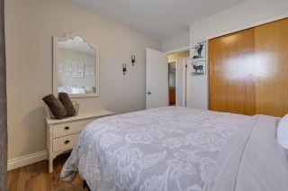 Photo 20: 8907 154 Street in Edmonton: Zone 22 House for sale : MLS®# E4235392