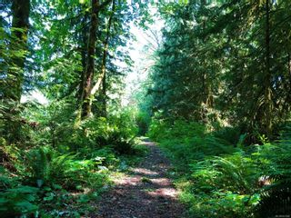 Photo 25: 5 8631 South Shore Rd in : Du Lake Cowichan Land for sale (Duncan)  : MLS®# 857868