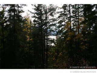 Photo 9: 23 Vickers Trail in Anglemont: Anglemont Estates Vacant Land for sale (North Shuswap)  : MLS®# 10131535