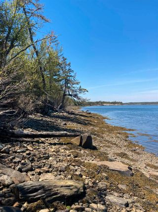 Photo 3: Lot 1 West Liscomb Point in West Liscomb: 303-Guysborough County Vacant Land for sale (Highland Region)  : MLS®# 202114674