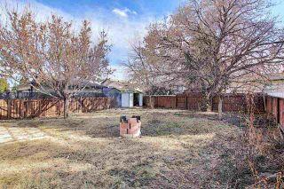 Photo 20: 3519 13 Avenue in Edmonton: Zone 29 House for sale : MLS®# E4238618