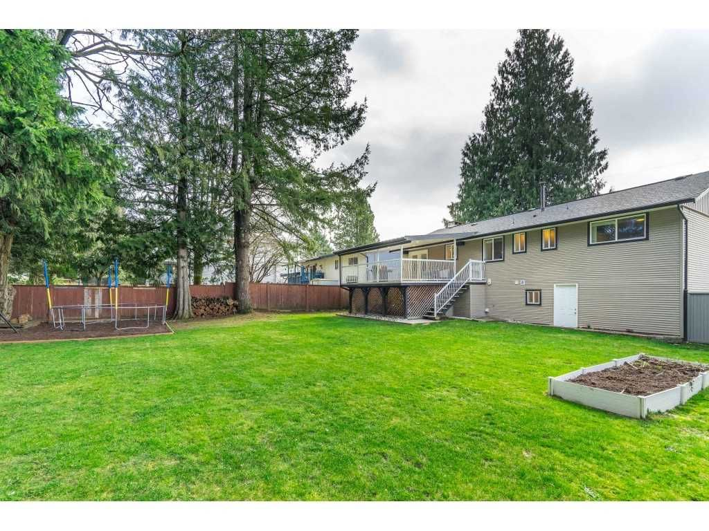 Photo 34: Photos: 34119 LARCH Street in Abbotsford: Central Abbotsford House for sale : MLS®# R2547045
