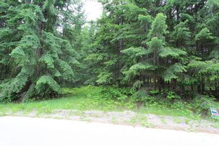 Photo 6: 108 Airstrip Road in Anglemont: North Shuswap Land Only for sale (Shuswap)  : MLS®# 10067018