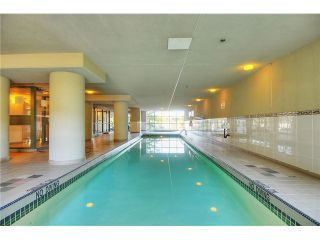 """Photo 10: 301 1088 QUEBEC Street in Vancouver: Mount Pleasant VE Condo for sale in """"VICEROY"""" (Vancouver East)  : MLS®# V974256"""