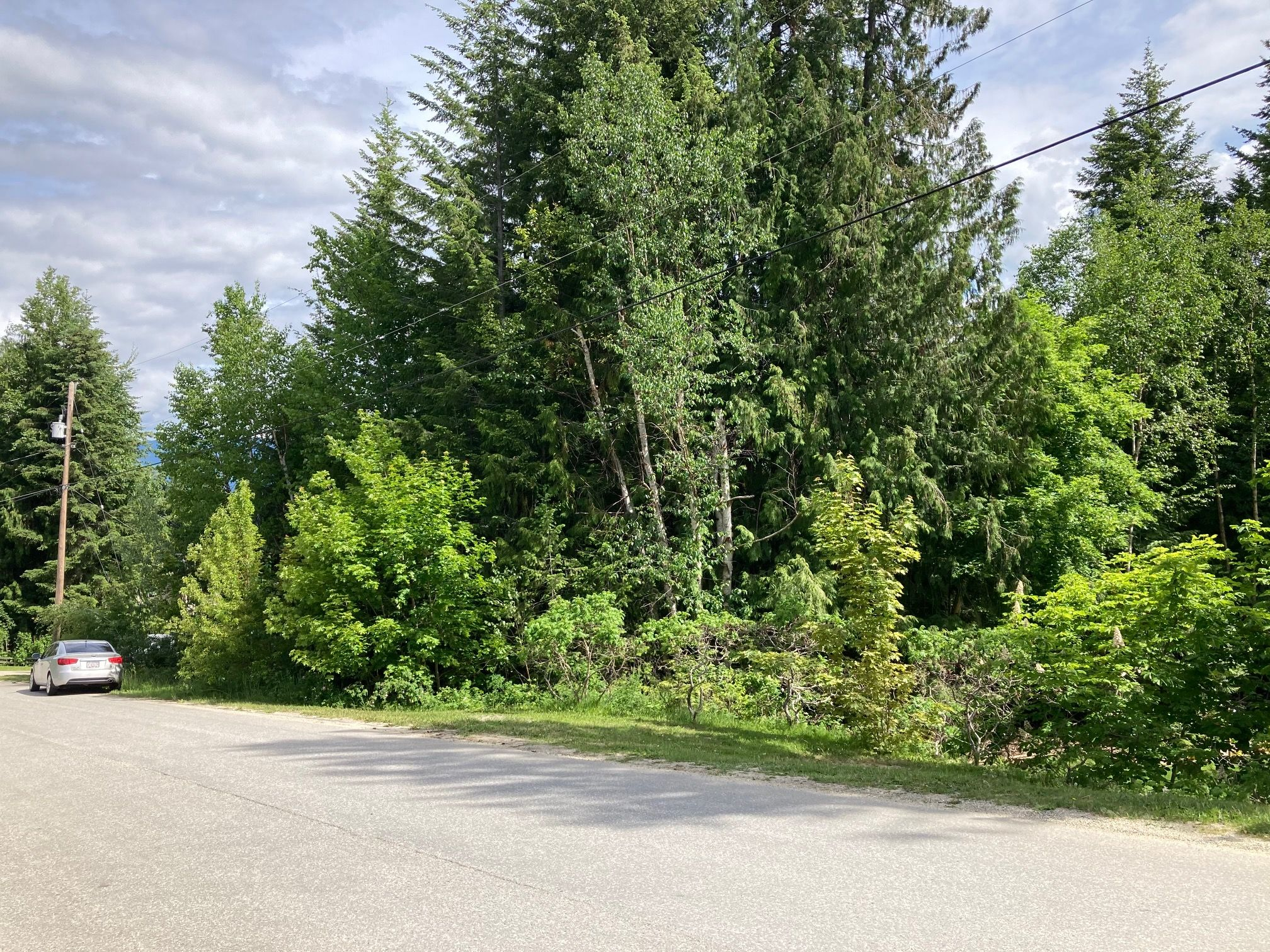 Main Photo: Lot 51 Forest Dr.: Blind Bay Land Only for sale (Shuswap)  : MLS®# 10232622