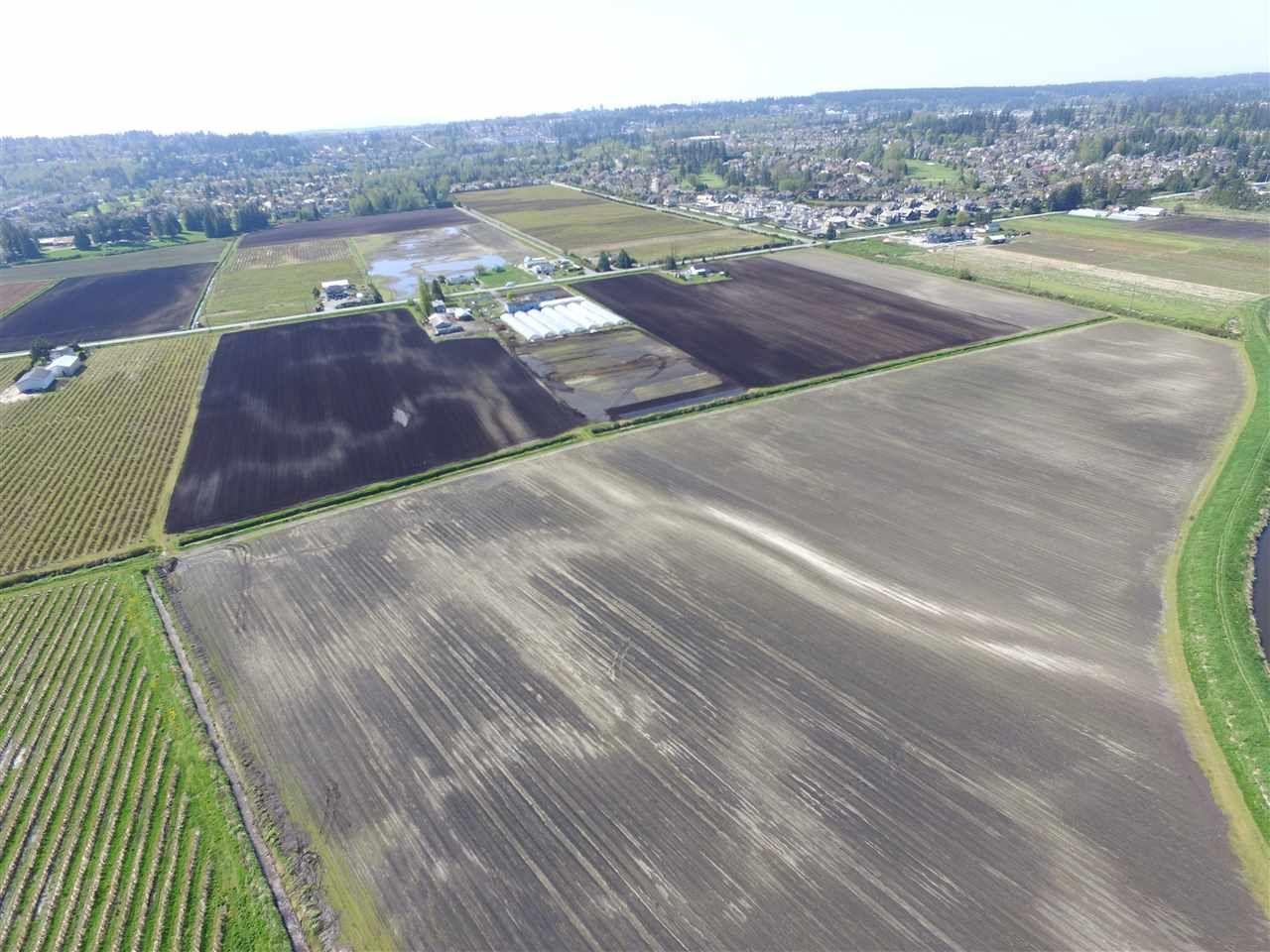 Photo 8: Photos: 16271 40 Avenue in Surrey: Serpentine Land for sale (Cloverdale)  : MLS®# R2335945