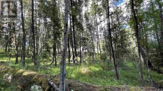 Photo 5: LOT 40 KALLUM DRIVE in 108 Mile Ranch: Vacant Land for sale : MLS®# R2591288