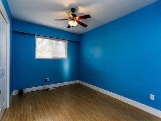 Photo 10: 11766 83RD AV in Delta: Scottsdale House for sale (N. Delta)  : MLS®# F1401009