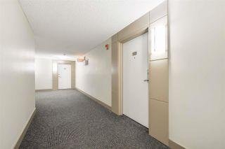 Photo 32: 206 4450 MCCRAE Avenue in Edmonton: Zone 27 Condo for sale : MLS®# E4242315