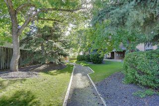 Photo 26: 1910 9800 HORTON Road SW in Calgary: Haysboro Apartment for sale : MLS®# A1072480