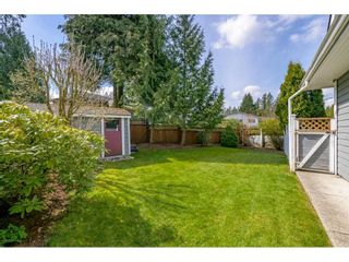 Photo 37: 4662 197 Street in Langley: Langley City House for sale : MLS®# R2561402
