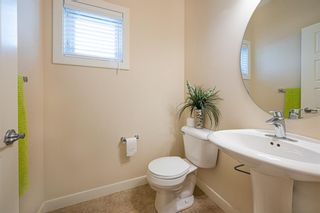 Photo 23: 31 SKYVIEW SHORES Link in Calgary: Skyview Ranch Detached for sale : MLS®# A1130937