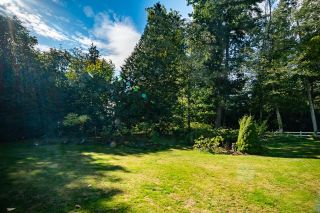Photo 8: 2243 174 Street in Surrey: Pacific Douglas House for sale (South Surrey White Rock)  : MLS®# R2624074