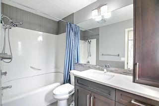 Photo 25: 23 Castlefall Way NE in Calgary: Castleridge Detached for sale : MLS®# A1141276