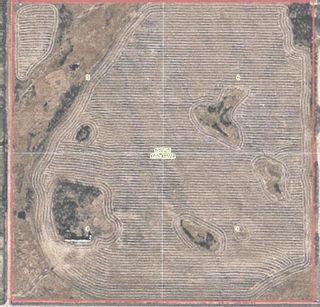 Photo 1: Highway 29 & Range Rd 181: Rural Lamont County Rural Land/Vacant Lot for sale : MLS®# E4258171