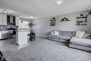 Photo 4: 84 Malvern Crescent NE in Calgary: Marlborough Park Detached for sale : MLS®# A1130301