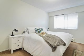 """Photo 8: 306 436 SEVENTH Street in New Westminster: Uptown NW Condo for sale in """"Regency Court"""" : MLS®# R2242396"""