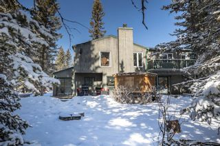 Photo 44: 52 Wolf Drive: Bragg Creek Detached for sale : MLS®# A1084049