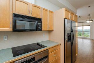 Photo 10: 402 9503 101 Avenue in Edmonton: Zone 13 Condo for sale : MLS®# E4258119